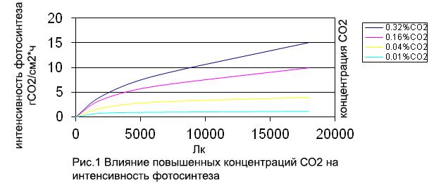 Графики фотосинтеза