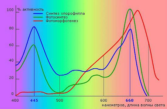 Полезный спектр, способствующий выращиванию обильного урожая